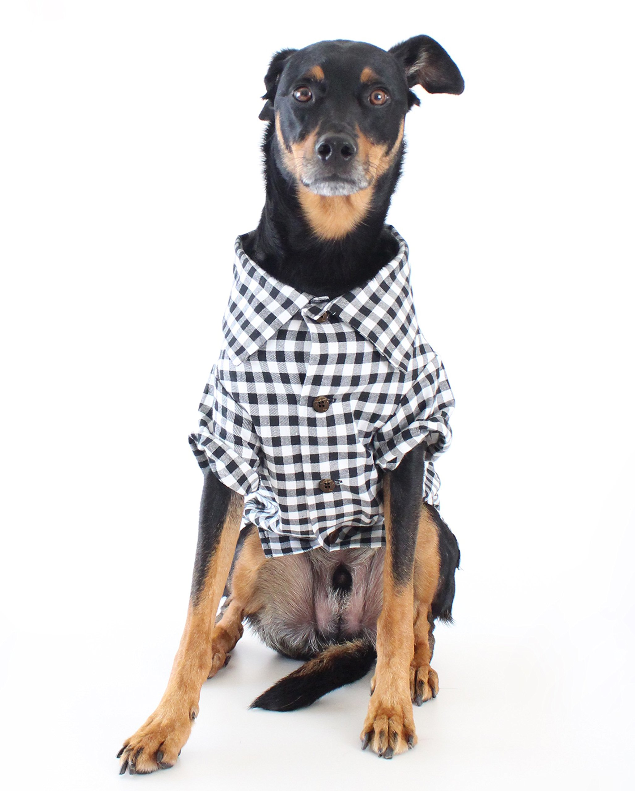 Dog Threads™ Plaid Dog Shirt by Classic Button Down Shirt (M (20-28lbs)) Preppy Gingham Plaid Dog Dress Shirt Black and White