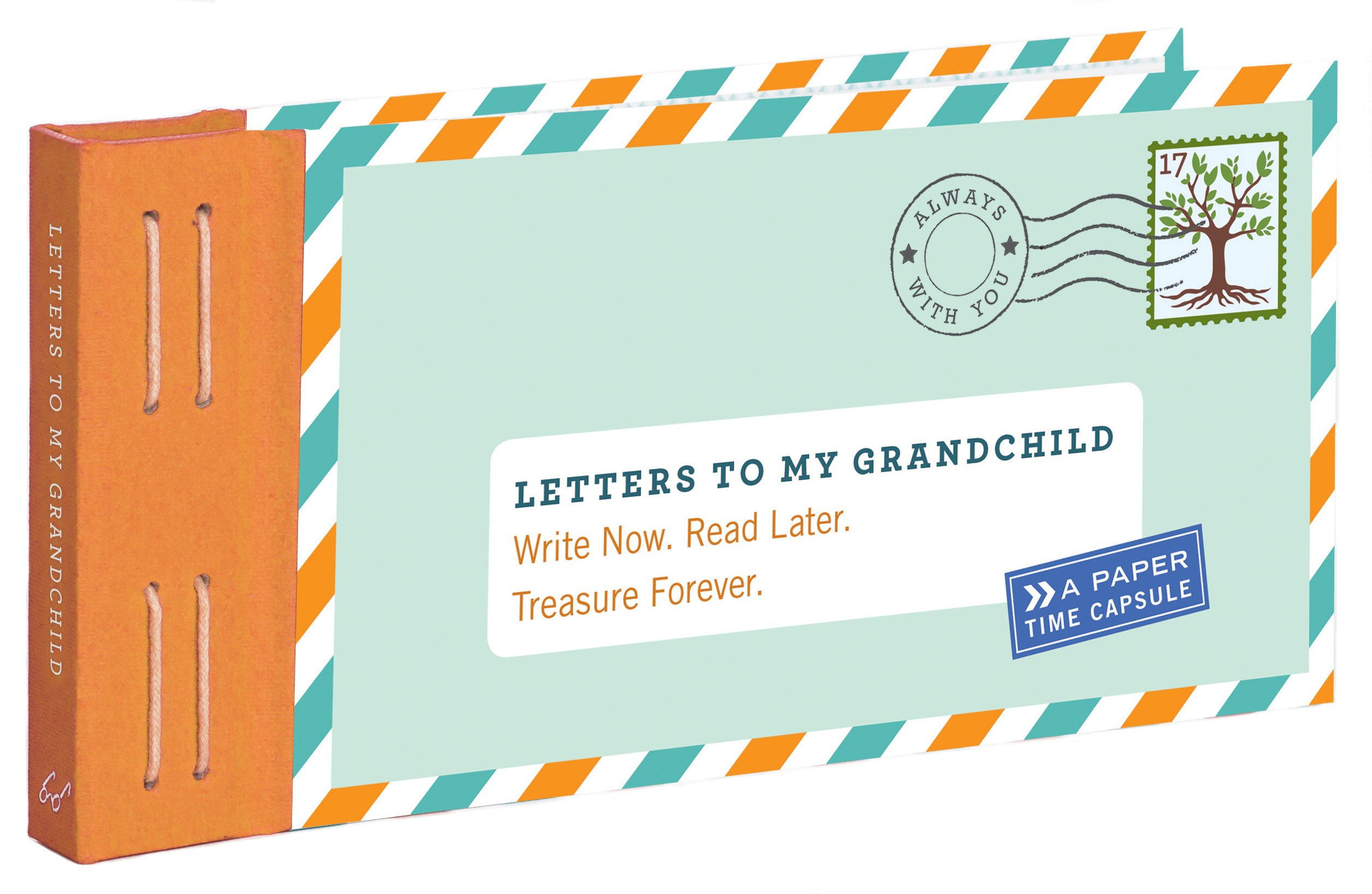 Letters to My Grandchild: Write Now  Read Later  Treasure