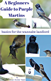 A Beginners Guide to Purple Martins: basics for the wannabe landlord