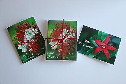Mele Kalikimaka Christmas Cards.Amazon Com Hawaii Inspired Christmas Cards With Envelopes