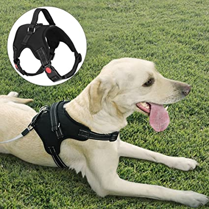 dog harness vest with handle