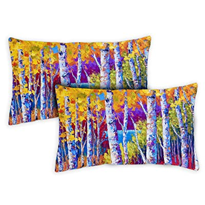 Toland Home Garden 731242 Blissful Birches 12 x 19 inch Indoor/Outdoor, Pillow with Insert (2-Pack) : Garden & Outdoor