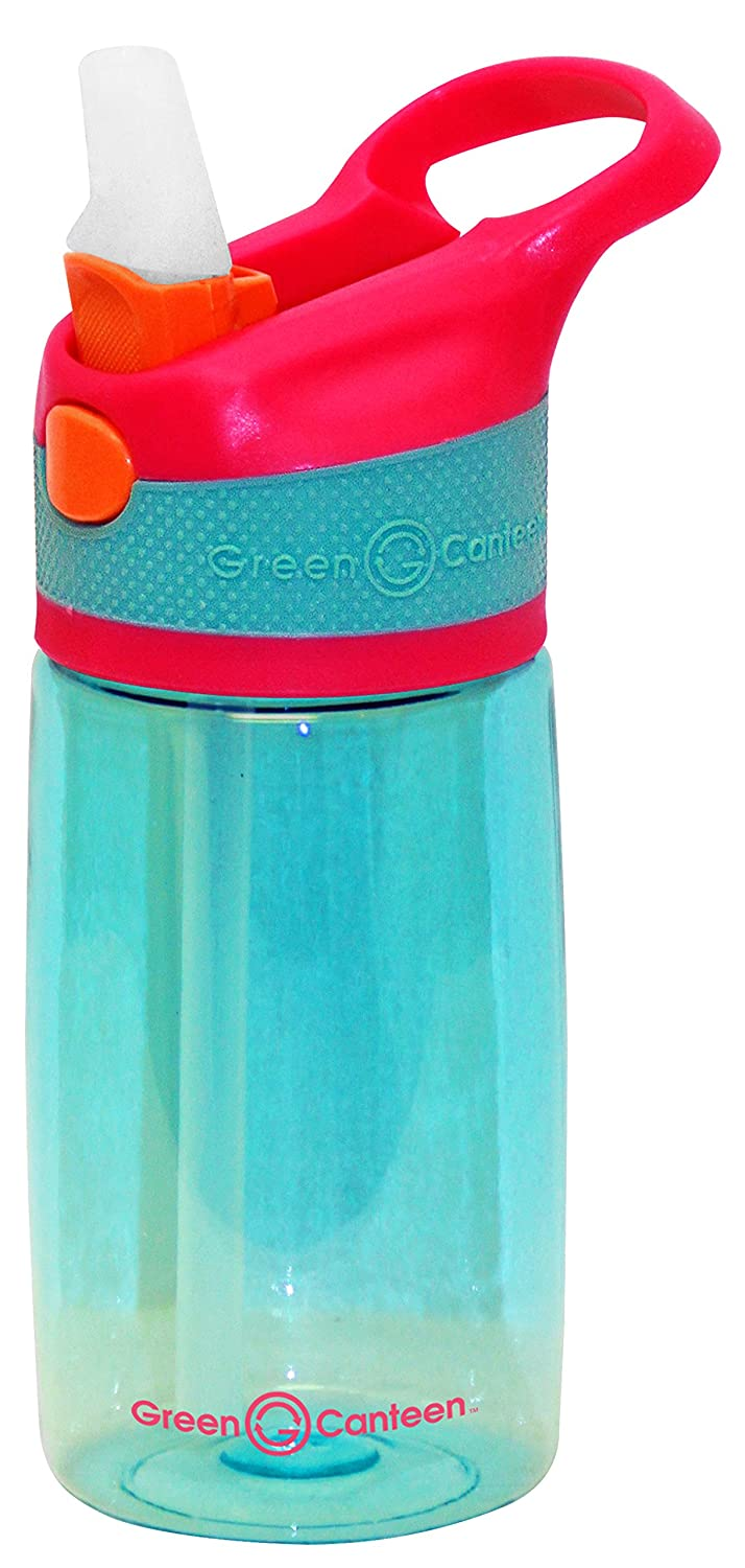 Green Canteen PTBK-400-PPP Single Wall Tritan plastic Pink Bottle with Purple//Pink Push Button Flip Cap with Orange Accents 12 oz