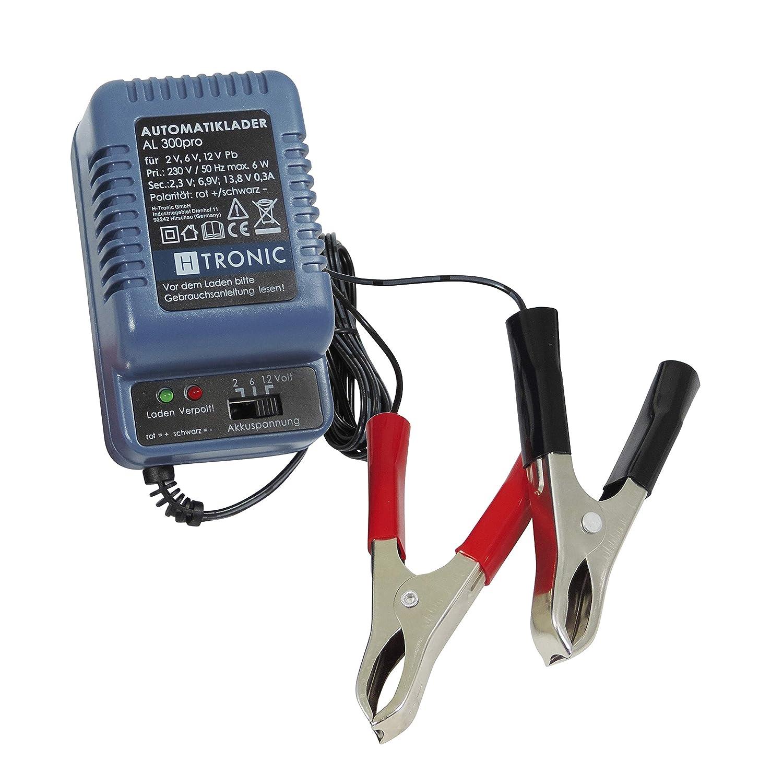 12 volt batterie ladegerät bauen