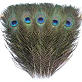 TinaWood 20 PCS Natural Peacock Eye Feathers 9.8-11.8 inch for DIY Craft, Wedding Holiday Decoration