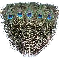 disfraz de dama de honor Halloween guirnalda de Navidad y decoraci/ón en casa Plumas de pavo real naturales para manualidades FBGood 5 unidades