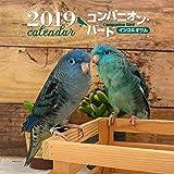 2019年大判カレンダー コンパニオン・バード インコ&オウム