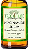 ToLB Niacinamide Serum - 2oz - Vitamin B3 Serum with Hyaluronic Acid, Avocado Fruit Oil, Vitamin E, Organic Aloe, and many Natural and Organic Ingredients - 2 Ounces