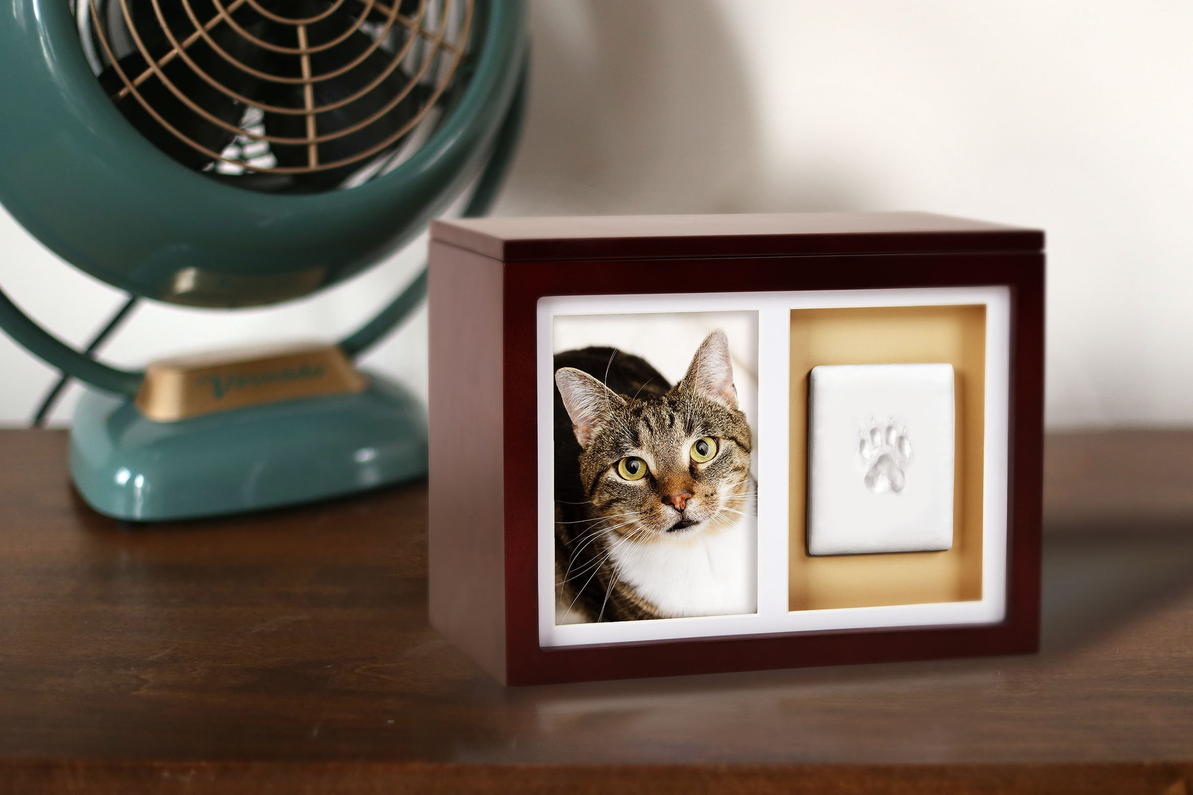 Pearhead Dog Or Cat Paw Prints Pet Memory Box With Clay Imprint Kit