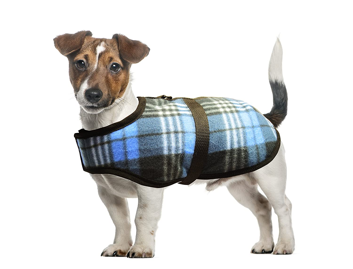 bluee X-Small bluee X-Small All Seasons Puppy Fleece Jacket for Small Dogs and Puppies for Outfits for Boy Dogs (1X Small bluee)