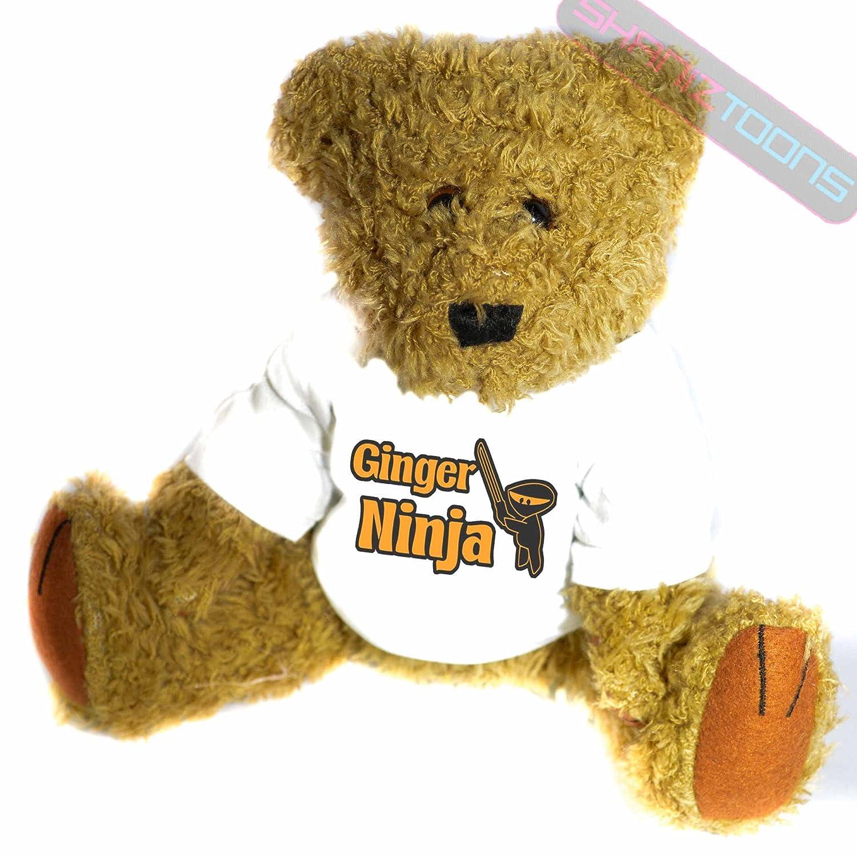 Amazon.com: shaniztoons Ginger Ninja Gift Teddy Bear: Toys ...
