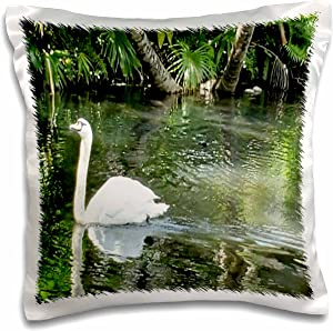 3dRose Image of White Swan Swims Along Palm Beach Garden Pond - Pillow Cases (pc_348239_1)