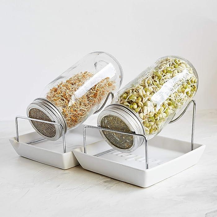 The Best Modern Sprout Self Watering Garden In A Jar
