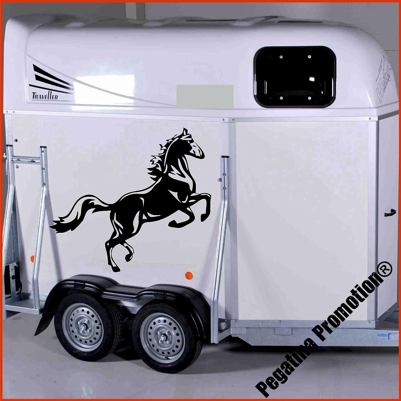 springendes Pferd Modell 1 Aufkleber Anhänger Pferd Anhänger ca. 80x60cm Pegatina Promotion ®