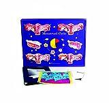 American Educational Menstrual Cycle Model Activity Set