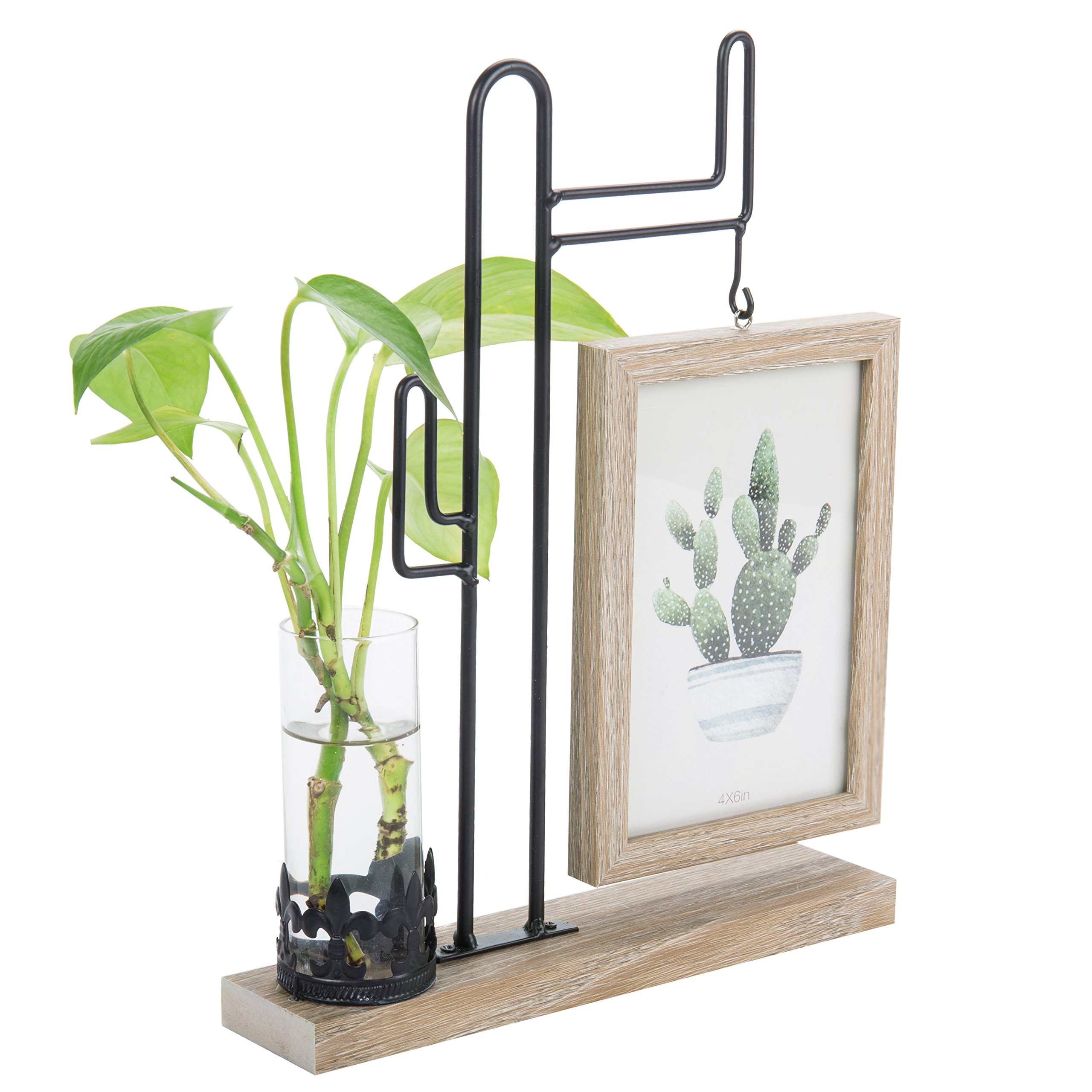 MyGift Metal Cactus Display Stand with Wood Picture Frame & Glass Vase