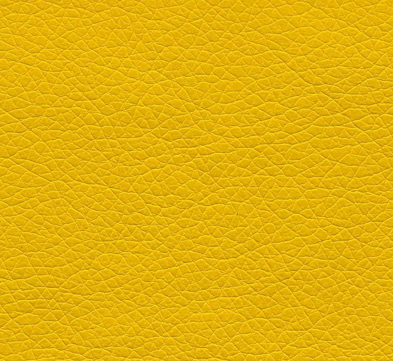 Pequeñas Zippy - amarillo todos los funda de piel sintética cama Diván para - resistente al agua & prueba de pulgas - limpiar Fácil cuidado cama: Amazon.es: ...