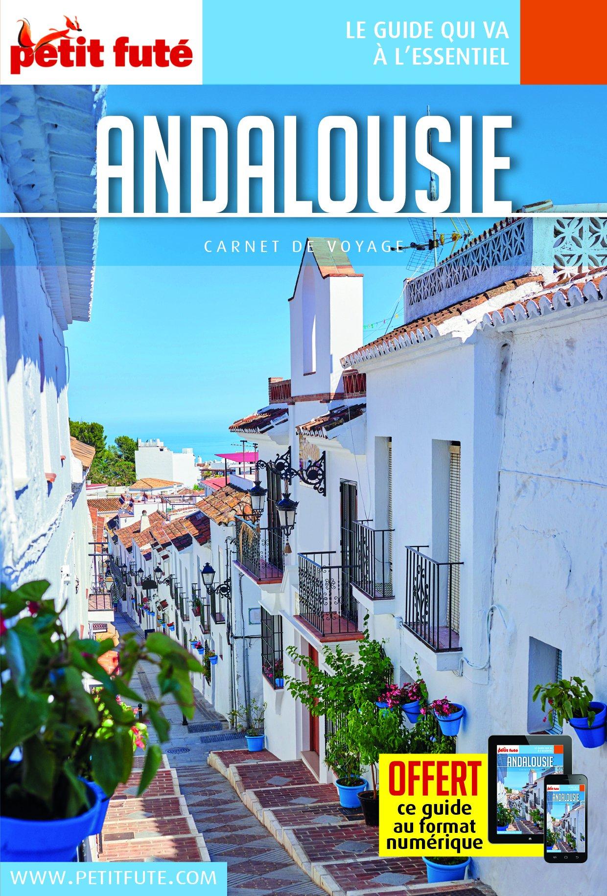 Guide Andalousie 2018 Carnet Petit Futé Poche – 25 avril 2018 B075KV2ZYX Espagne-andalousie Europe Guides étrangers