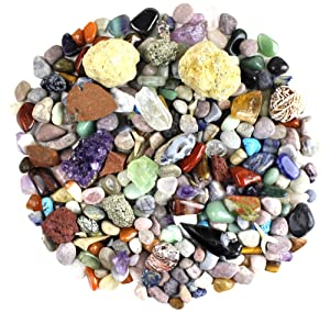 Rock & Mineral Collection Activity Kit (Over 150 Pcs), Educational Identification Sheet Plus 2 Easy Break Geodes, Fossilized Shark Teeth and Arrowheads, Dancing Bear Brand