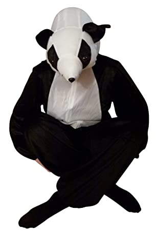 Koala Bar Einheitsgrosse Xxl Kostum Fasching Karneval Karnevalskostum