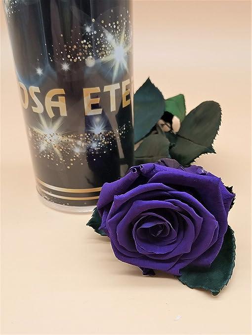 Almaflor Rosa eterna preservada Morada Extra. Gratis TU ENVÍO Prime. Rosa preservada eterna Morada Extra. Hecho en España.: Amazon.es: Hogar