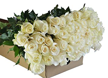 Amazon Blooms2door 50 White Roses Farm Fresh Long Stem