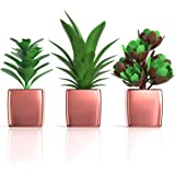 Desk Plants Decor for Women Office - Rose Gold Decor for Women Bedroom Living Room Bookshelf Salon - Set of 3 Realistic Faux Cute Artificial Succulents in Blush Pink Pots - Cubicle Home Decorations
