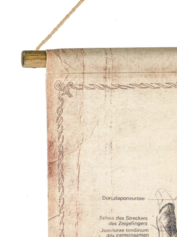 Amazon.de: Schulkarte Lehrtafel Wandkarte Anatomie Hand historische ...