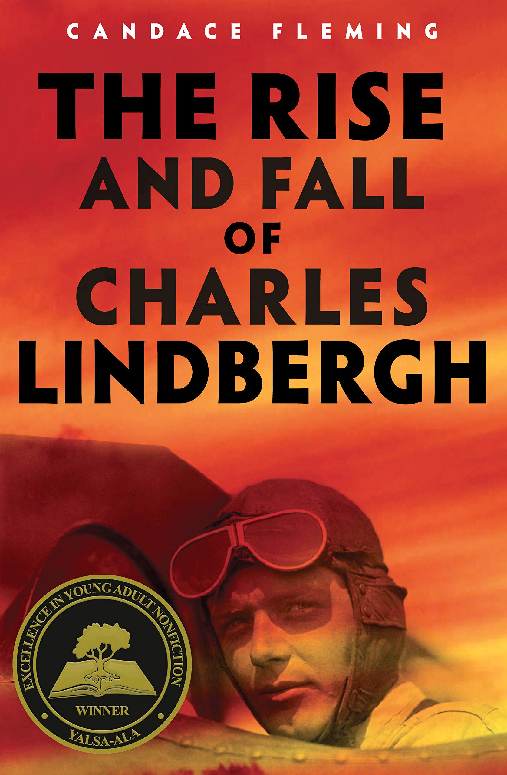 Image result for the rise and fall of charles lindbergh