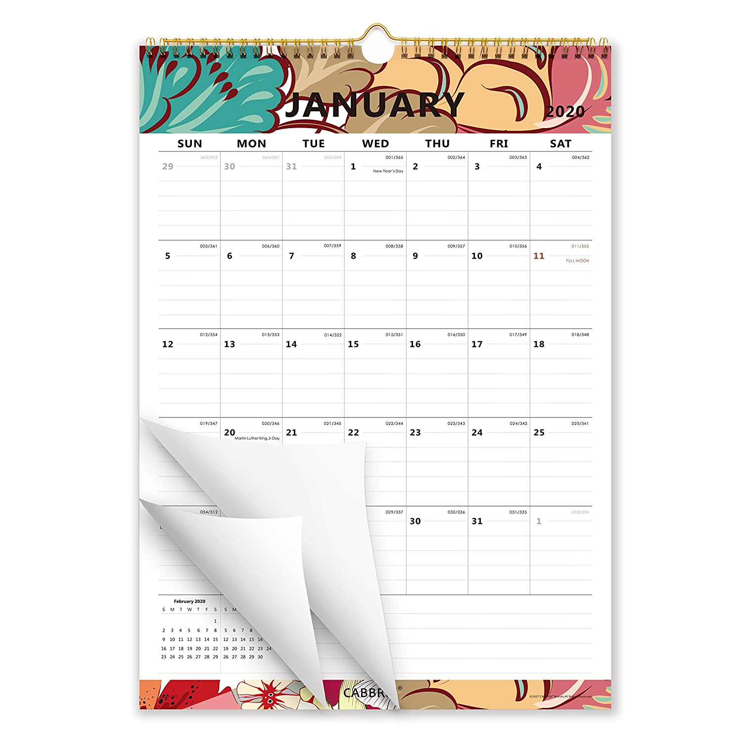 Cabbrix Academic Year Monthly Wall Calendar, January 2020 - June 2021, Vertical, Ruled Blocks, 17 x 12 Inches