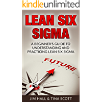 Lean Six Sigma, A Beginner's Guide to Understanding and Practicing Lean Six Sigma (English Edition)