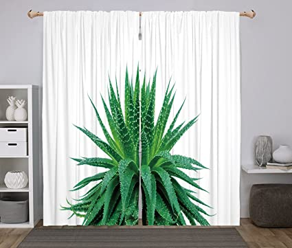 Amazon Com 2 Panel Set Window Drapes Kitchen Curtains Plant Medicinal Aloe Vera With Vibrant Colors Indigenous Species Alternative Natural Remedy Fern Green For Bedroom Living Room Dorm Kitchen Cafe Home Kitchen