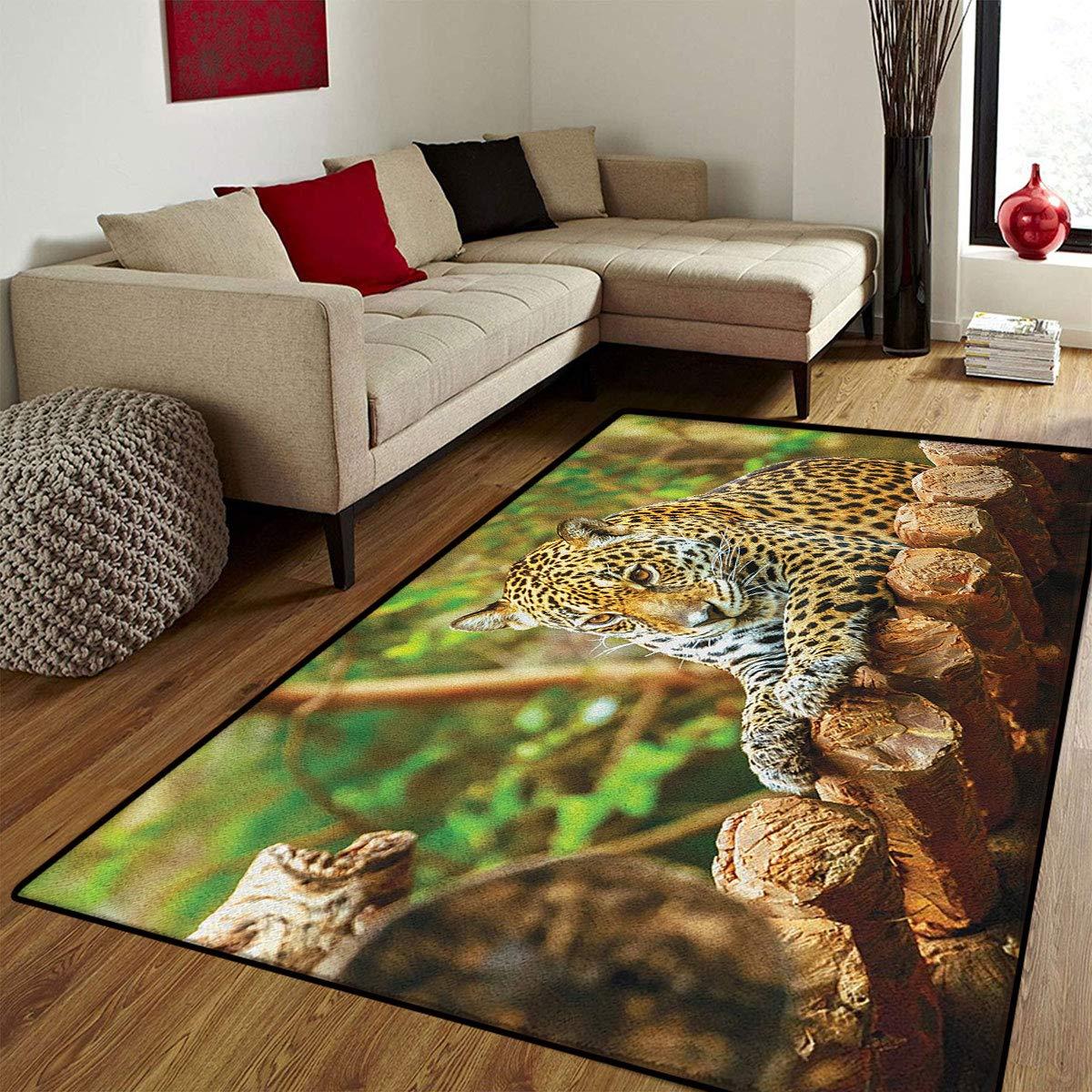 color08 6'6\ color08 6'6\ Zoo,Door Mat Outside,Jaguar on Wood Floor Wildlife Animals Feline Big Cat Mammal Predator Resting,Door Mats for Inside Non Slip Backing,Green Yellow Brown,6.6x8 ft