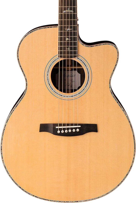 PRS Paul Reed Smith SE Guitarra eléctrica acústica con estuche