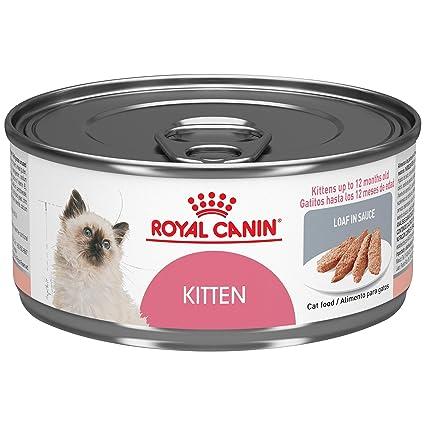 ROYAL CANIN Kitten Instinctive Loaf en salsa latón comida para gato, 13,3 g