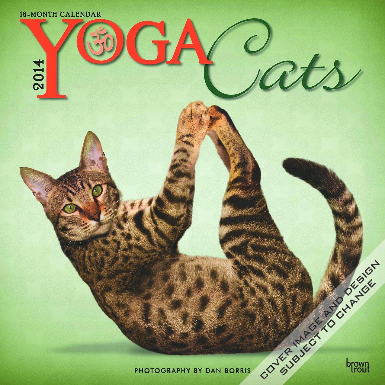 Yoga Cats - 2014 Calendar