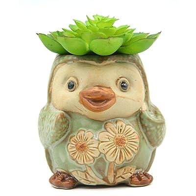 """MONMOB 3.5"""" Ceramic Penguin Shaped Plant Pot/Bonsai Pot/Flower Pot/Succulent Planter Multipurpose Pot: Garden & Outdoor"""