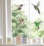 Stickers4- Autocollant de vitrauphanie avec 4 magnifiques colibris–Colibris de décorations.