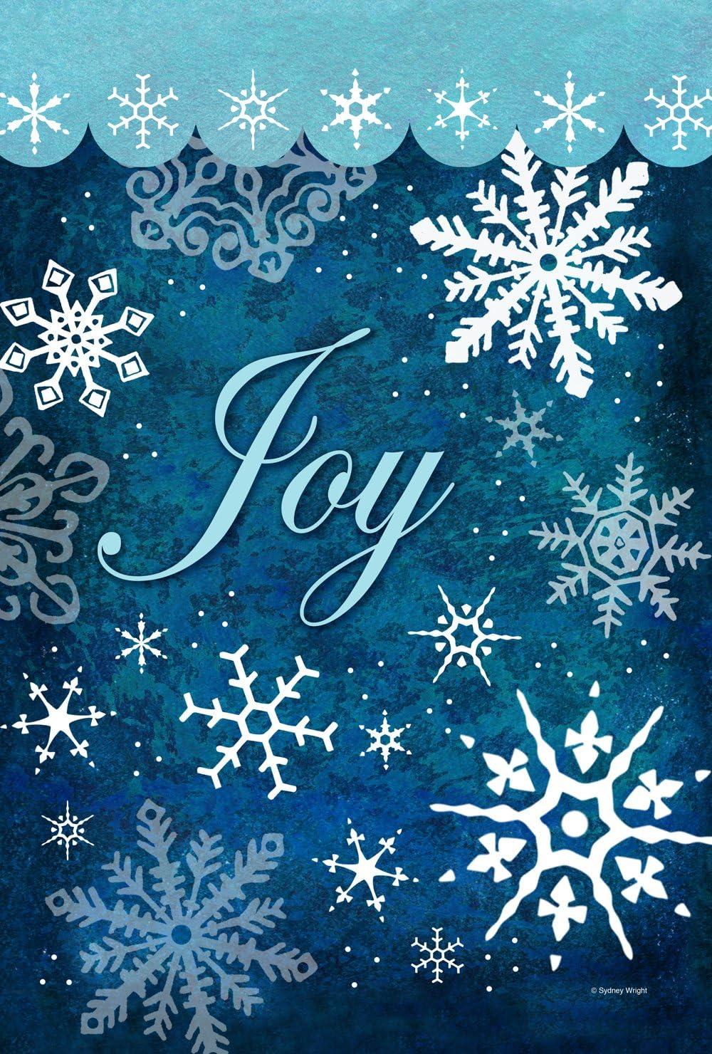 Toland Home Garden Snowflake Flurries 28 x 40 Inch Decorative Colorful Winter Joy Snow House Flag - 109734