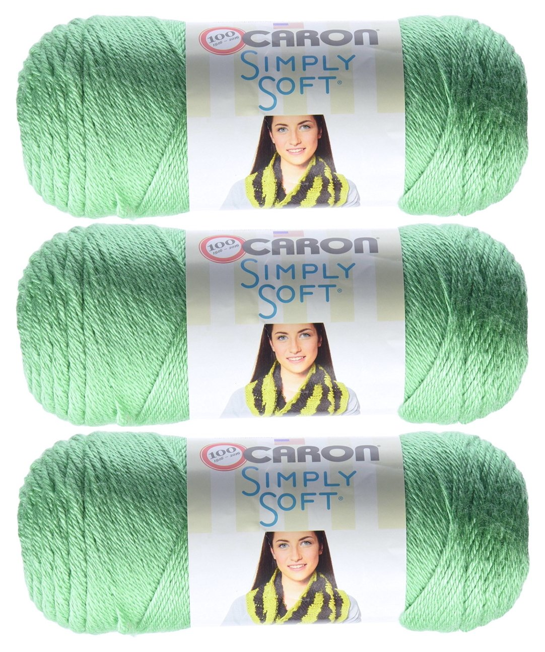 Caron Simply Soft Yarn Solids (3-Pack) Sage H97003-9705