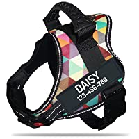 PawPawify Personalized No Pull Dog Harness