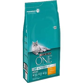 Purina ONE - Bifensis, con Pollo y Cereales para Gato Adulto 6 Kg: Amazon.es: Productos para mascotas