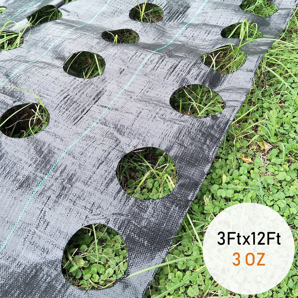 Originline Weed Control Fabric with Ready Made Planting Holes - Ground Cover Weed Barrier - Eco-Friendly for Vegetable Garden Landscape, 3 feet by 12 feet