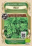グリーンフィールド ハーブ有機種子 チャービル/セルフィーユ <カールドチャービル> [小袋] A007