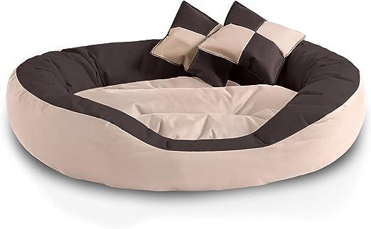 BedDog® 4en1 Saba Beige/Marron XL Aprox. 85x70cm colchón para ...