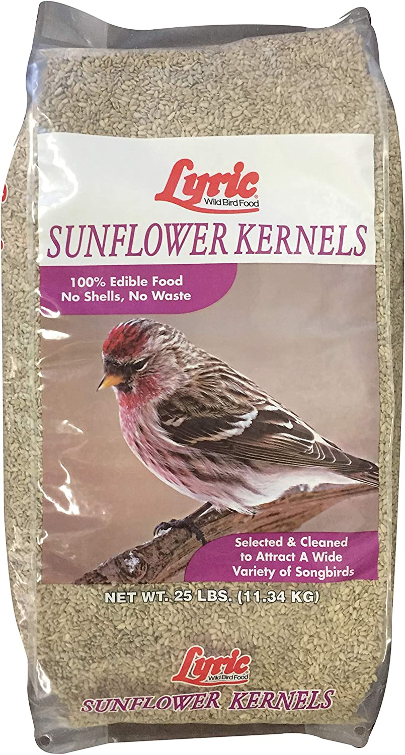 Lyric 2647446 Sunflower Kernels - 25 lb.