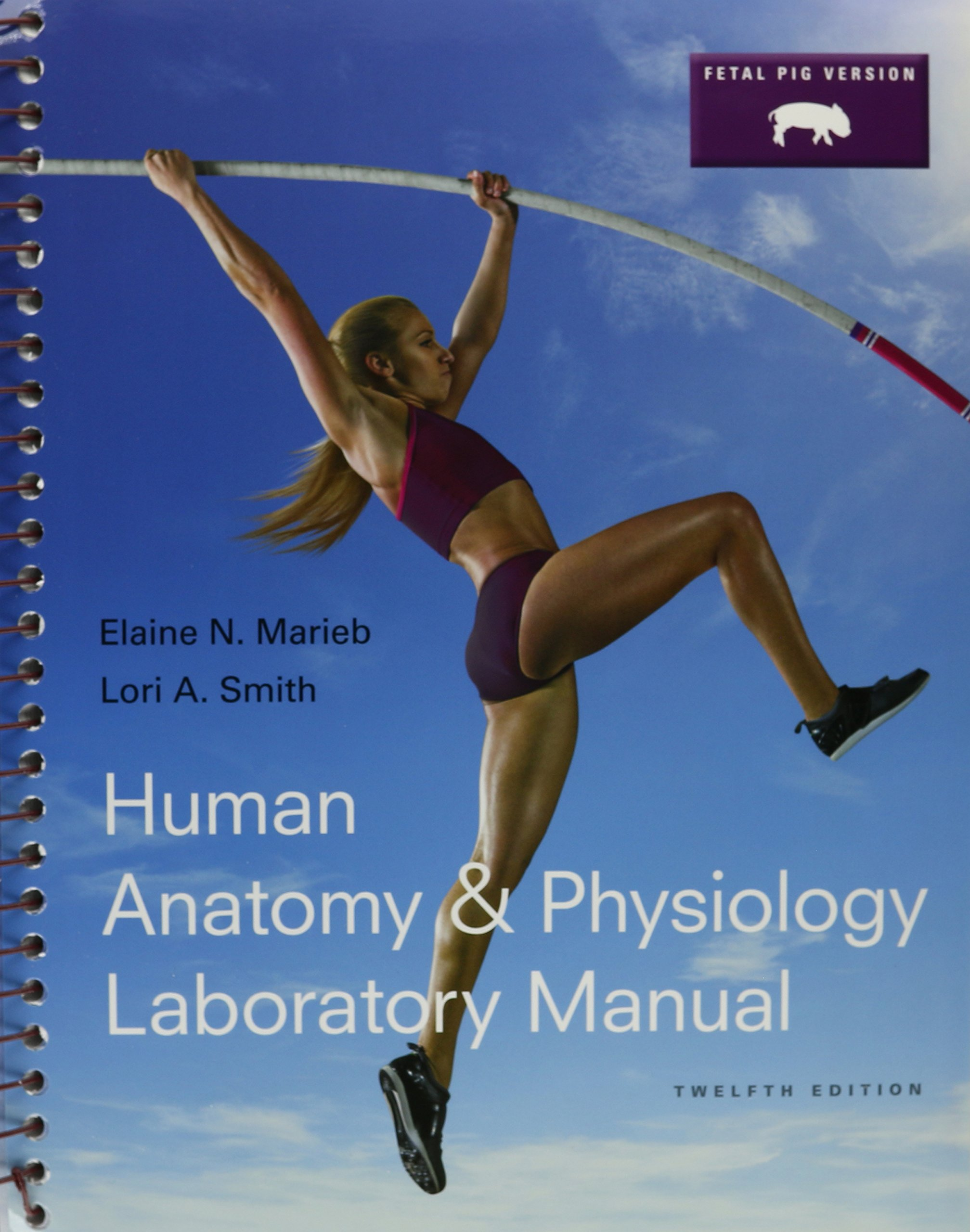 Human Anatomy & Physiology 10th Ed.+ Laboratory Manual 12th Ed ...