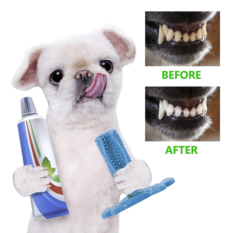 Dog Toothbrush Stick Chew Toy.
