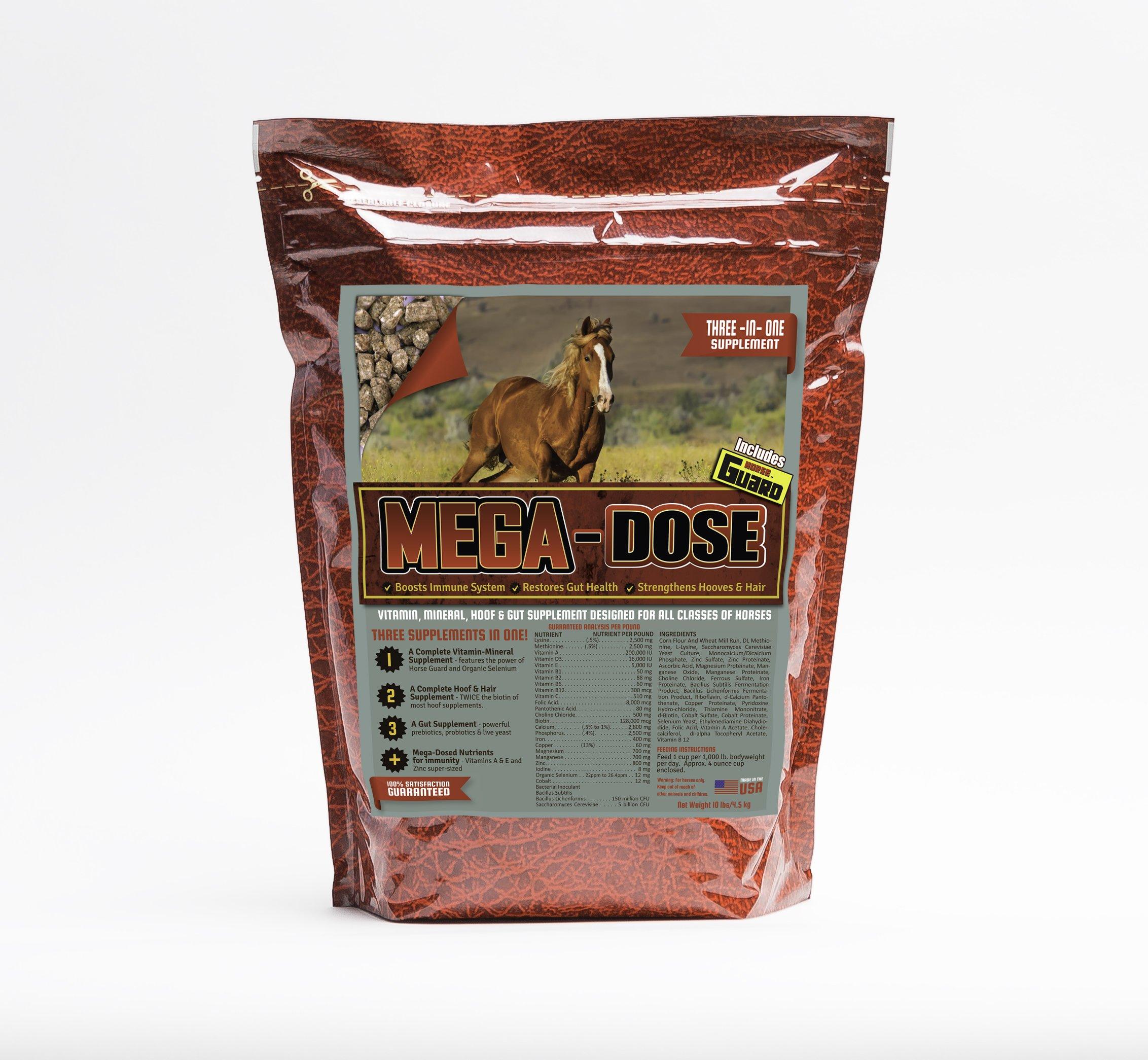 Horse Guard Mega Dose Equine Vitamin Mineral Hoof & Probiotic Supplement, 10 lb by Horse Guard