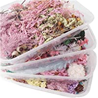 RHLDZSWB 1 Box of Real Dried Flowers Dried Plants Scented Candle Epoxy Resin Pendant Necklace Making Crafts DIY…